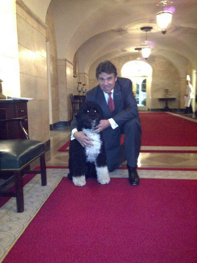 Perry might be a staunch Republican, but when it comes to canines, he has no problem crossing the aisle. Here he is with President Obama's dog, Bo.