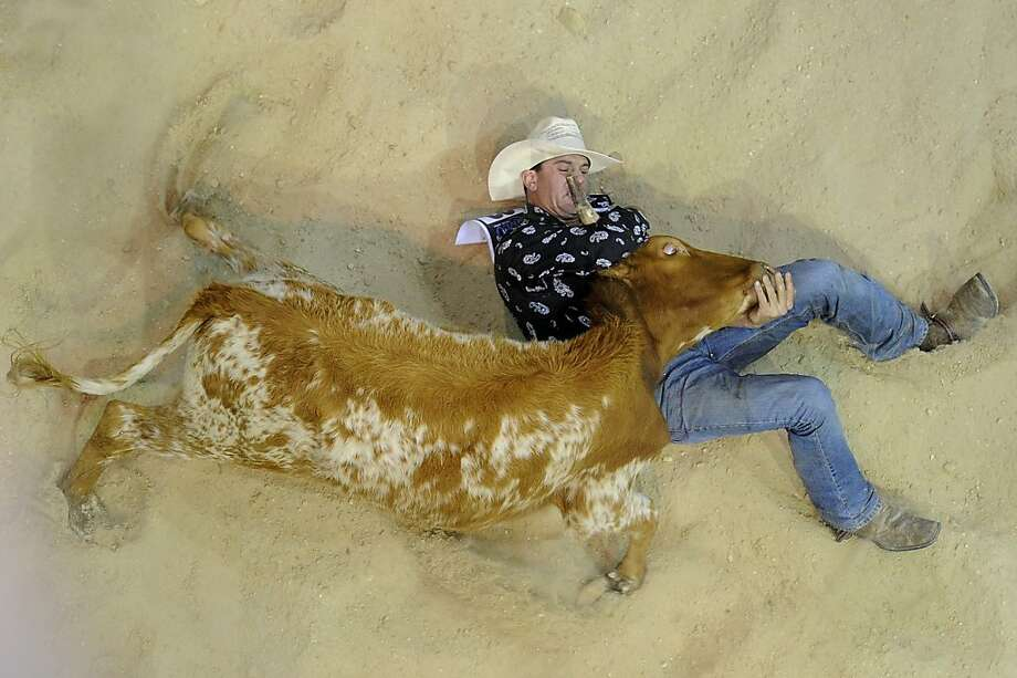 Australia's versionof Guan Niu usually involves wearing a cowboy hat. Here Terry Evison immobilizes a bovine in the Steer Wrestling event of the National Rodeo Finals in Gold Coast. Photo: Matt Roberts, Getty Images