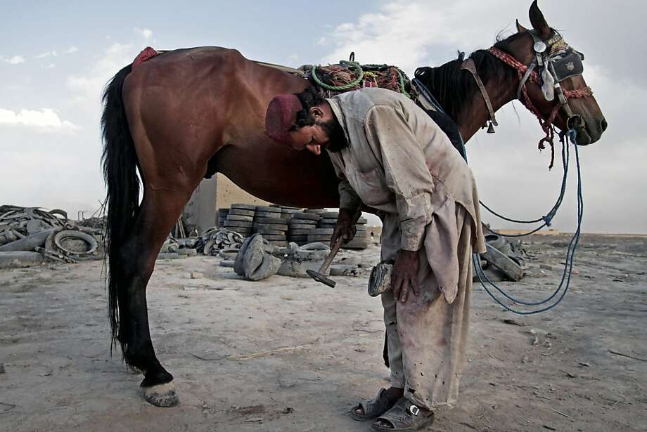 An Afghan farrier, shoes a horse on the outskirts of Kabul, Afghanistan, Sunday, June 16, 2013. (AP Photo/Rahmat Gul) Photo: Rahmat Gul, Associated Press