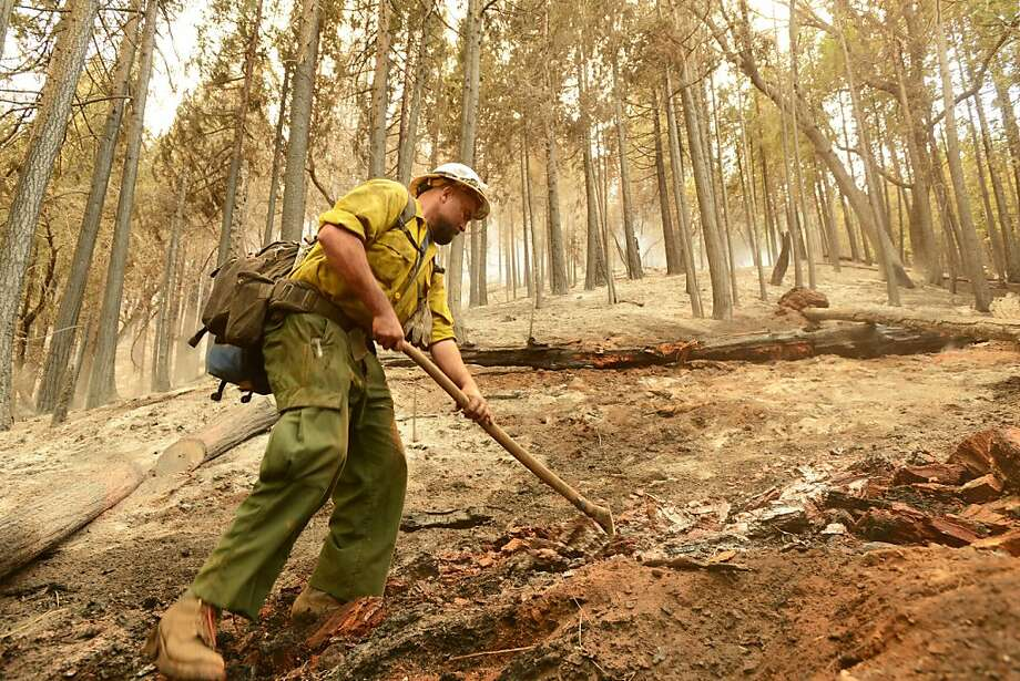 U.S. Forest Service fireman, Bo Rice, 28, works on putting out hot spots while fighting the Carstens Fire in the Sierra National Forest near Jerseydale, Calif.,  in the Mariposa area on Monday, June 17, 2013.  More than 700 firefighters are battling the Carstens fire which began Sunday afternoon and has burned about 1 1/2 square miles or 900 acres, California Department of Forestry and Fire Protection spokesman Daniel Berlant said. With more than 140 engines and two helicopters on the scene, the crews have contained about 15 percent of the blaze so far that's burning in an area about six miles northeast of Mariposa off Highway 140, Berlant added. (AP Photo/The Merced Sun-Star,  Christopher Winterfeldt) Photo: Christopher Winterfeldt, Associated Press
