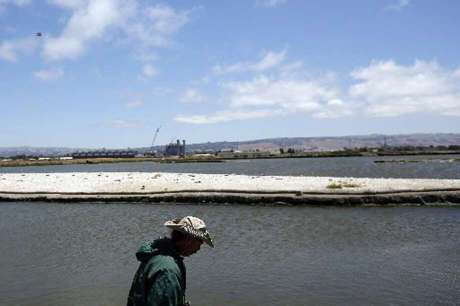 "Wildlife Resource Analyst Dave ""Doc Quack"" Riensche prepares to cross onto on Tern Island where endangered California Least Terns are nesting in Hayward Regional Shoreline in Hayward, Calif. on June 17, 2013."
