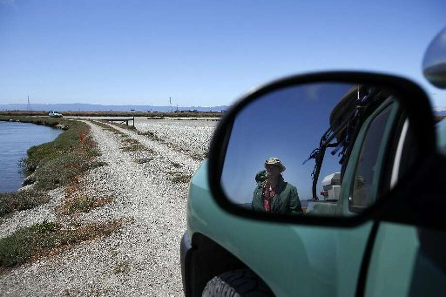 "Wildlife Resource Analyst Dave ""Doc Quack"" Riensche walks back to his truck after surveying Tern Island where endangered California Least Terns are nesting in Hayward Regional Shoreline in Hayward, Calif. on June 17, 2013."