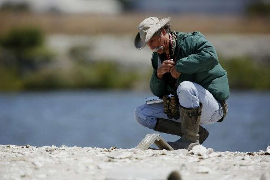 "Wildlife Resource Analyst Dave ""Doc Quack"" Riensche checks on Tern Island where endangered California Least Terns are nesting in Hayward Regional Shoreline in Hayward, Calif. on June 17, 2013."