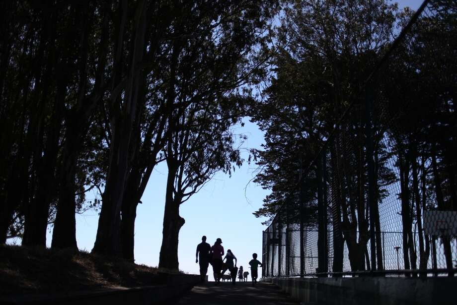 A group of people and dogs, some on-leash and some off, walk eastward in Holly Park on June 1, 2013 in San Francisco, Calif.