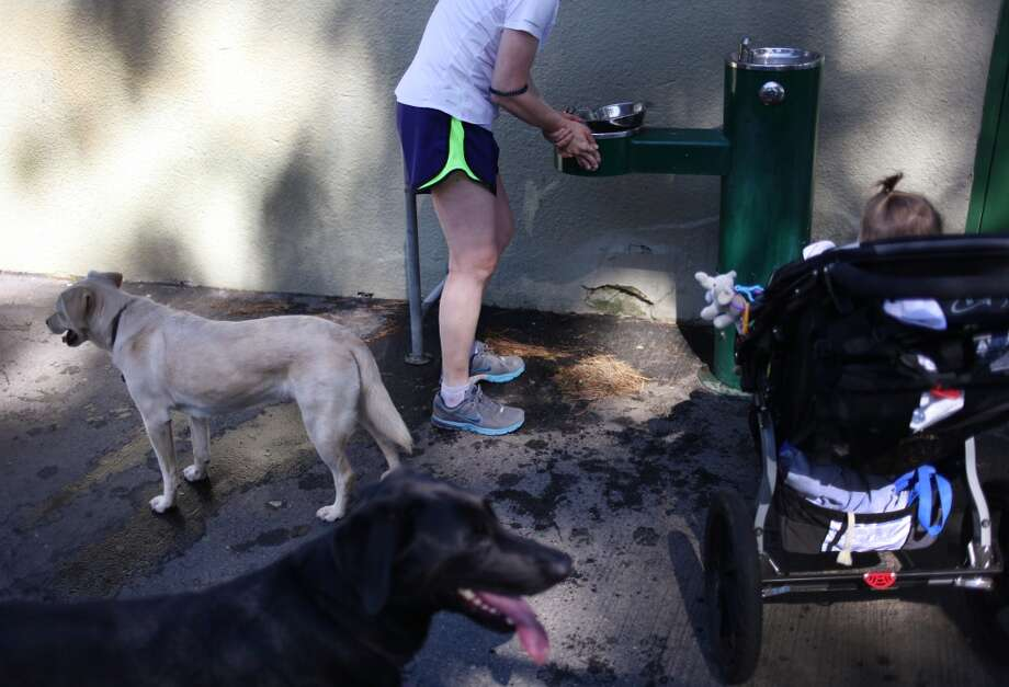 Gayle Gough fills up a water dish for her dogs Lucy (behind, yellow) and Roscoe (black) in Holly Park on June 1, 2013 in San Francisco, Calif. A dish for dogs stays near the water fountain in Holly Park. Gough asked that the girl in the stroller not be identified.