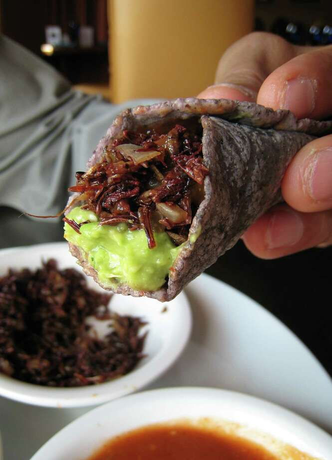 Eat chapulines (grasshoppers) and huitlacoche (corn fungus) at Hugo's. Photo: Paula Murphy, Hugo's / Handout email