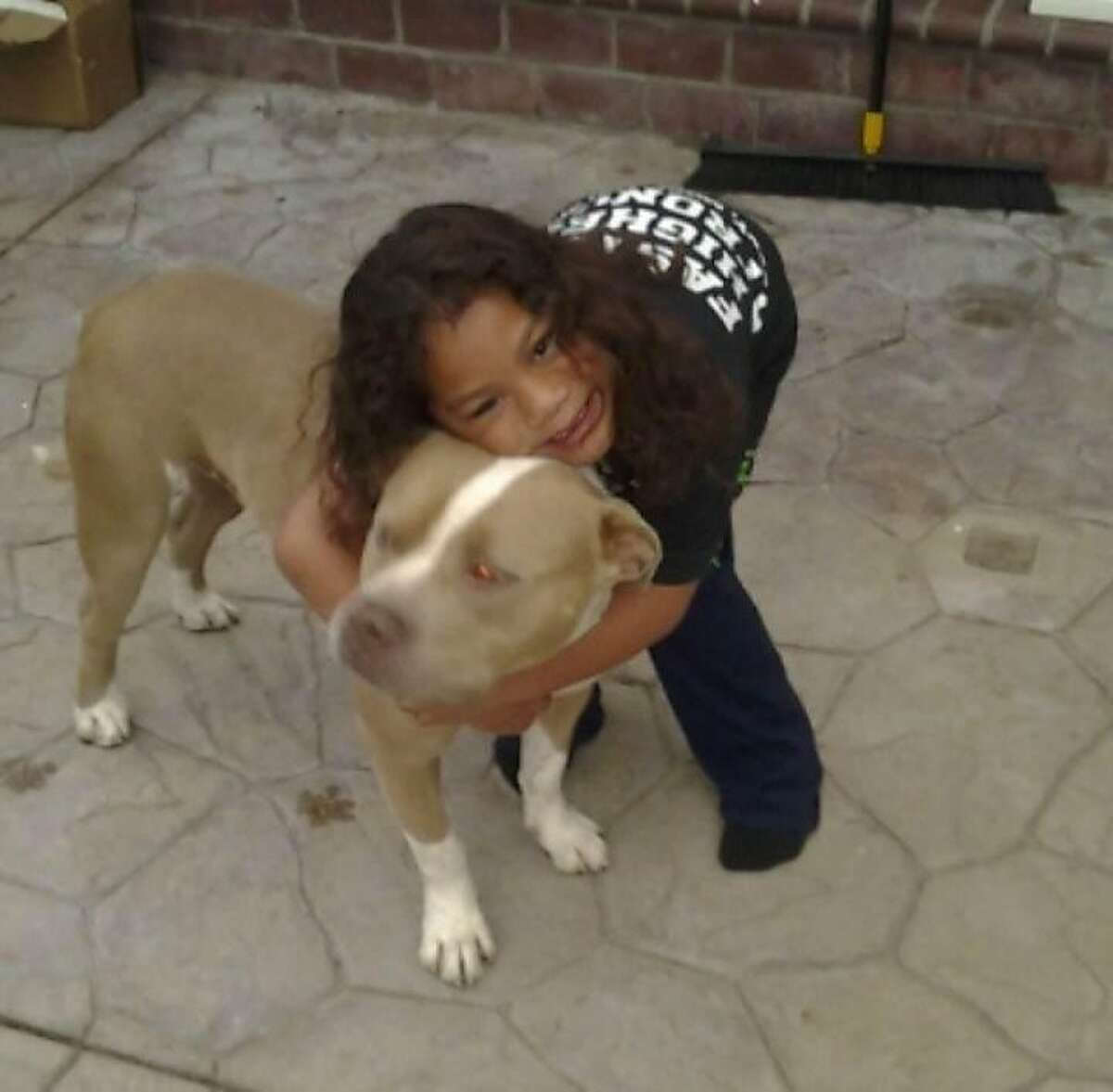 Nephi Selu died after being bitten by his family's pit bull mix, Gava.