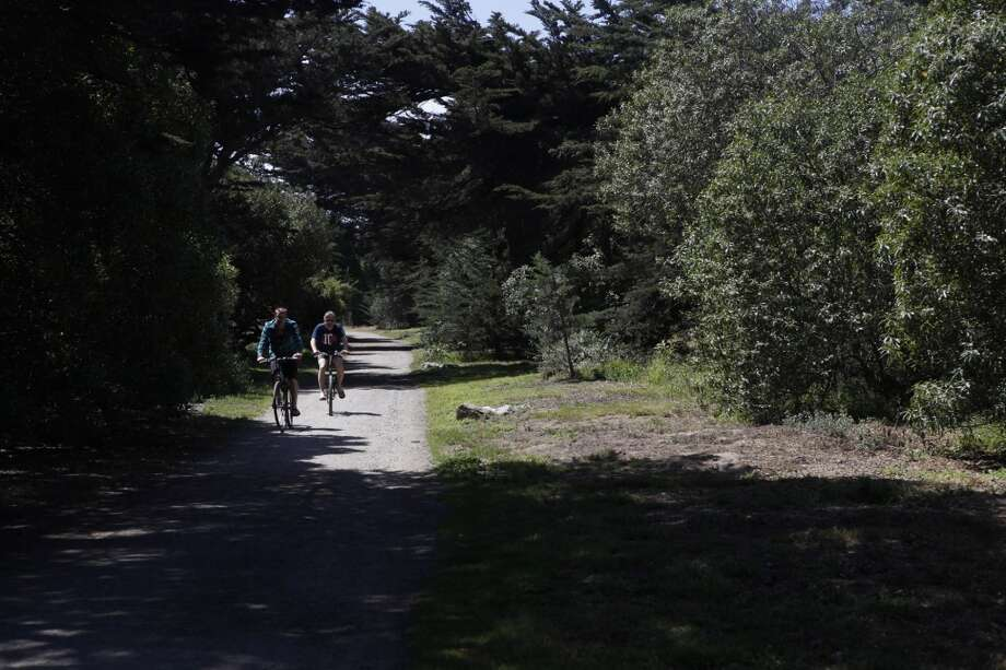 Bikers pass through the area of Golden Gate Park that is experiencing tree vandalism on Friday, June 14 in San Francisco, CA.