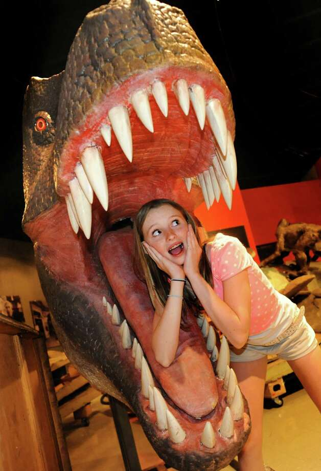 Lexi Schaible, 12, a seventh-grader at Taconic Hills Middle School in Columbia County, poses for a picture inside the mouth of a Tyrannosaurus rex on Wednesday, June 19, 2013, at miSci in Schenectady, N.Y. The traveling Dinosaurs! exhibit arrived at the museum for installation and features 17 animatron dinosaurs and seven interactive stations such as dino dig boxes and fossil rubbings. The exhibit runs from June 29 to Sept. 29 and is included in general admission to the museum of innovation and science. Prices are $6.50 for children, $8 for seniors and $9.50 for adults. (Cindy Schultz / Times Union) Photo: Cindy Schultz / 00022883A