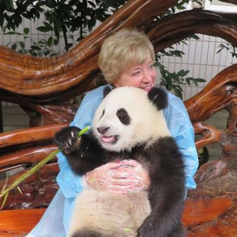 Linda McMahon recently visited a panda preserve near Chengdu, China, and posted this photo on her Facebook page. Photo: Contributed Photo