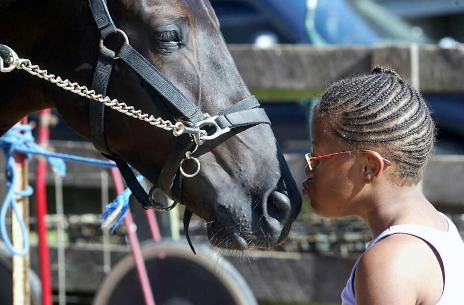 A kiss for good luck:Ten-year-old Janaa Patton busses a filly called Fox Valley Shiver at   the Greene County Fair in Carrillton, Ill. Shiver, obviously moved, went on to win the   fair's first harness race of the night. Photo: Margie M. Barnes, Associated Press