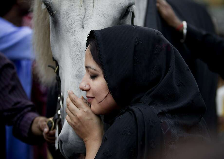 Holy horse: At a shrine in Rawalpindi, Pakistan, a devotee nuzzles a horse symbolizing the steed that Islamic spiritual leader Imam Hussein rode into battle against his enemies at Karbala. Photo: B.K. Bangash, Associated Press