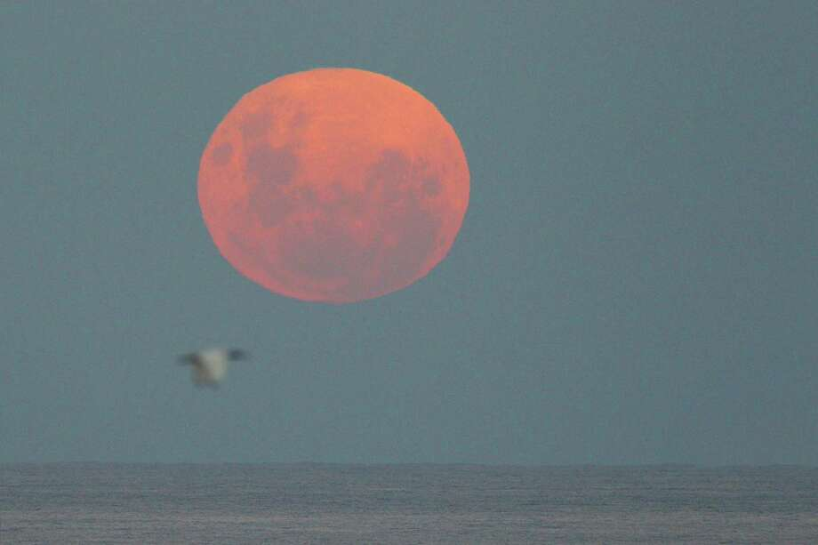 The supermoon over the ocean looks, well, super. This is from Sydney, Australia, on May 6, 2012. Photo by Cameron Spencer/Getty Images) Photo: Cameron Spencer, Getty/ap / 2012 Getty Images