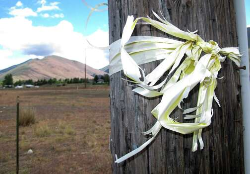 A tattered yellow ribbon honoring captive U.S. Army Sgt. Bowe Bergdahl is tied to a utility pole along Idaho State Highway 75 near Hailey, Idaho, on Thursday, June 20, 2013. The Taliban on Thursday proposed a deal in which they would free Bergdahl, a Hailey resident who has been held prisoner for four years, in exchange for five of their most senior operatives at Guantanamo Bay. (AP Photo/John Miller) Photo: John Miller, Associated Press / AP