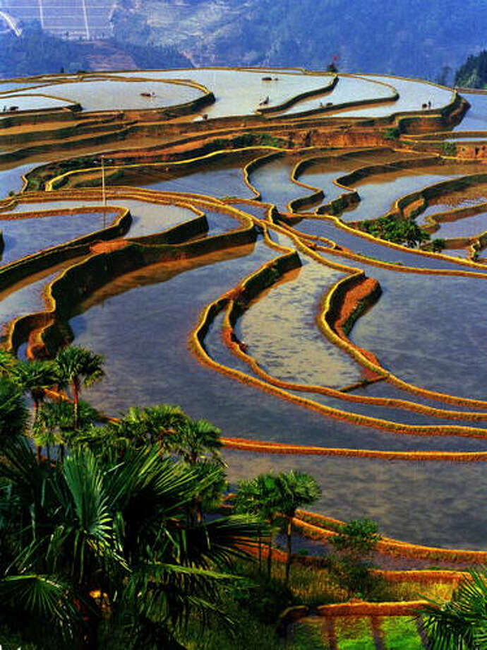 "China's Honghe Hani Rice Terraces are a ""cultural landscape""  now inscribed as a World Heritage Site"