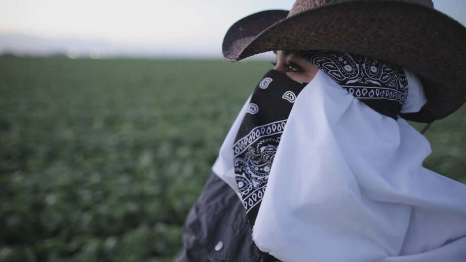 "California farmworker Maricruz Ladino said that when supervisors in the agricultural industry abuse their workers, ""it's very difficult to fight against that because we are working out of necessity, because we need to provide for our families."" Credit: Andres Cediel/ The Investigative Reporting Program"