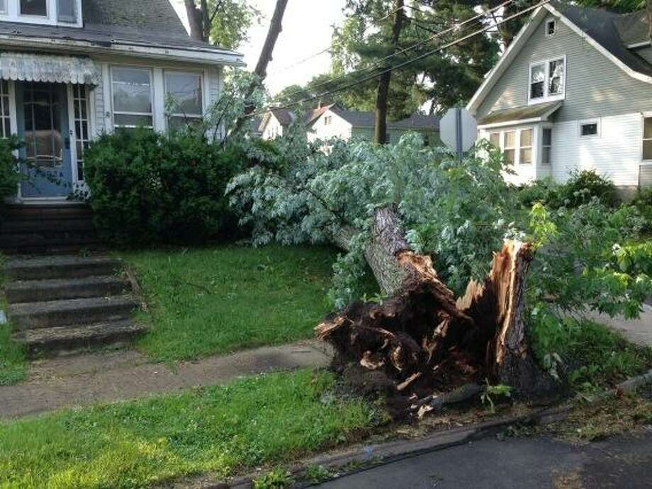 An uprooted tree outside 2002 Ninth Street in Rensselaer shows the strength of the winds associated with Monday's thunder storm. (Skip Dickstein / Times Union)