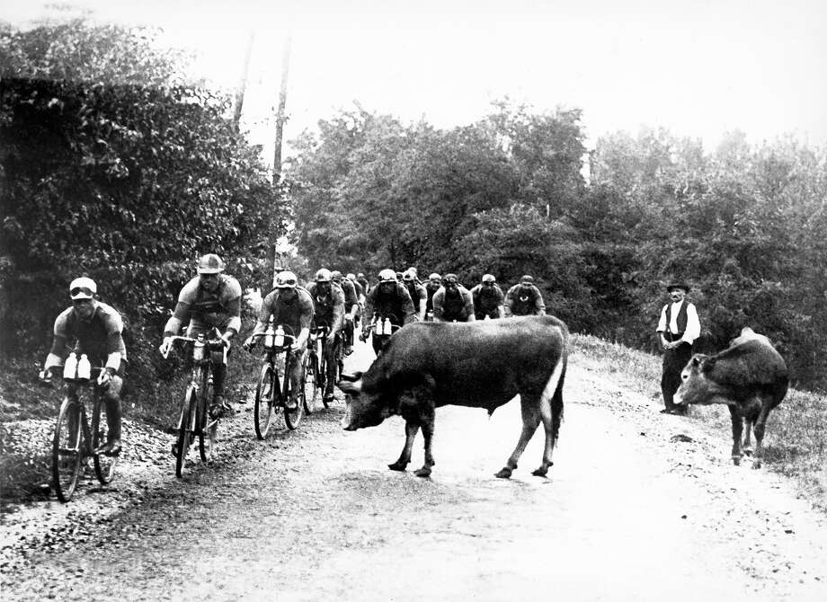 1929:  Cyclists pass a herd of cows. Photo: Keystone-France, Gamma-Keystone Via Getty Images / Gamma-Keystone