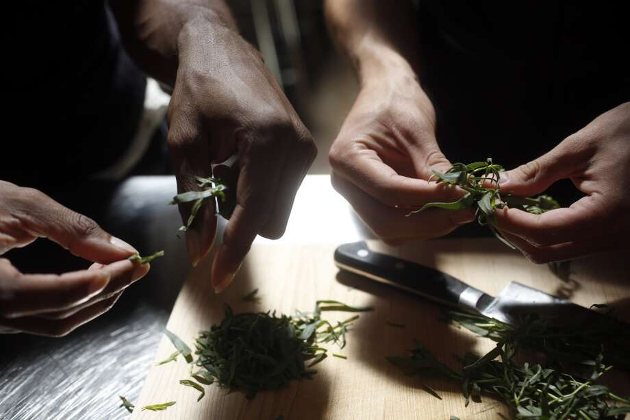 Ralph Willis, left, and Armand Seversson, right, pluck tarragon leaves as a part of a cooking class from the Larkin Street Youth Services at the San Francisco Cooking School in San Francisco.