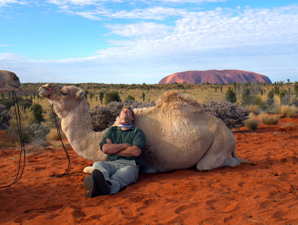 Richard Wiese travels to Ayres Rock, Northern Territory, Australia to learn about camels for an episode of the Westport-produced travel program,