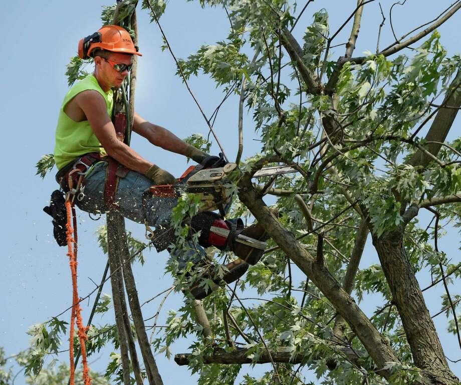 Kyle Trestizk of KT Tree Service cuts limbs of a massive tree that is being removed from the remains of a home at 1710 6th Street June 25, 2013 after a severe storm hit Rensselaer N.Y. last evening. KT Tree Service worked in the extreme heat to remove the remnants of the tree that destroyed the home where an elderly woman was brought to safety from the second floor after the storm.  (Skip Dickstein/Times Union) Photo: SKIP DICKSTEIN