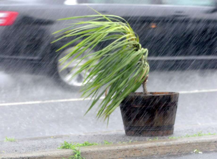 A potted plant is blown by the wind and rain in front of DeLucia's Deli and Grocery Tuesday, June 25, 2013 in Malta, N.Y.  (Lori Van Buren / Times Union) Photo: Lori Van Buren