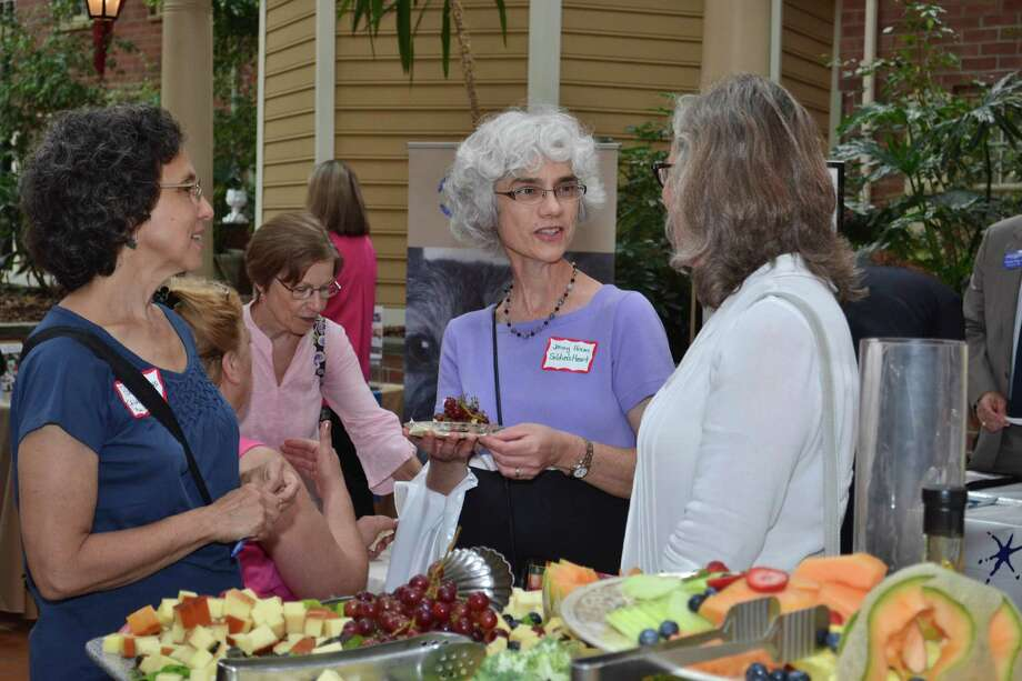 Were you Seen at the Women@Work Connect event 'Get Involved', featuring guest speaker Mona Golub and a number of local charities, at The Desmond in Colonie on Tuesday, June 25, 2013? Photo: Colleen Ingerto/Times Union Magazines