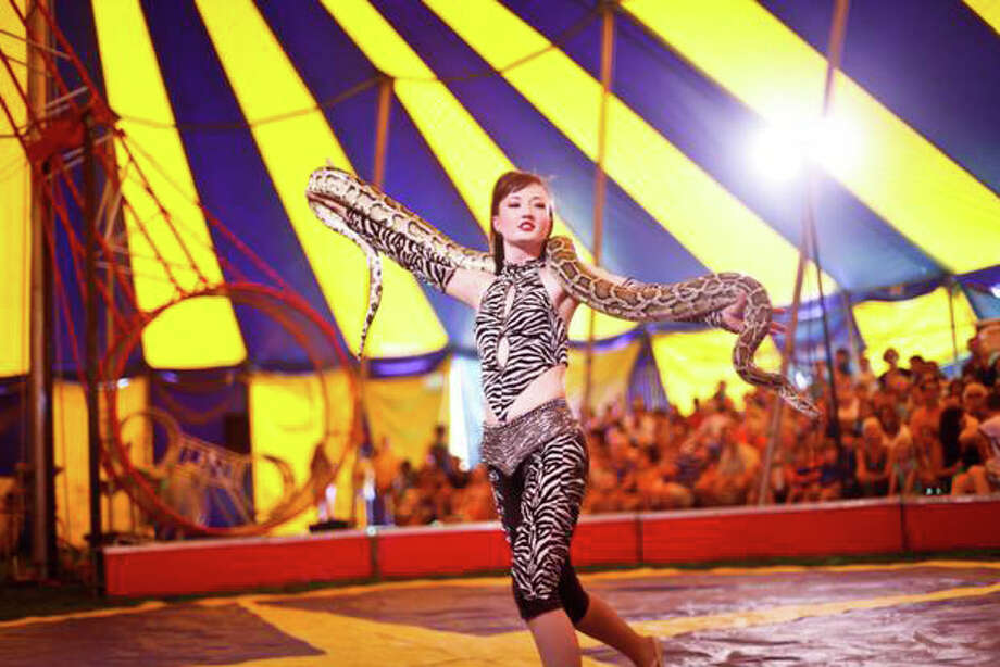 The Zerbini Family Circus returns to Saxe Middle School in New Canaan on Saturday. Kick off summer with aerialists, clowns, acrobats, jugglers, camel rides, food and fun for the entire family. Find out more.  Photo: Contributed Photo