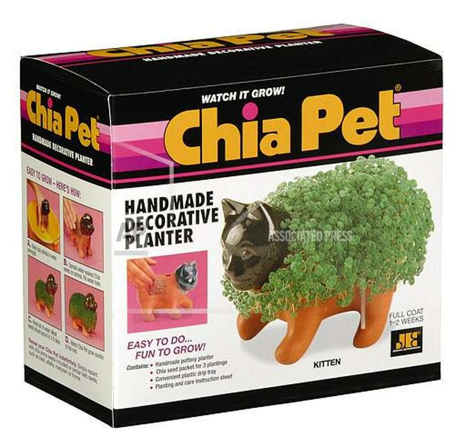 For those not quite ready to commit to a pet that moves, Chia Pets hit the market in 1982 and still exist today in a variety of forms (like Chia Kitten, Chia Puppy, and even Chia Crocodile).
