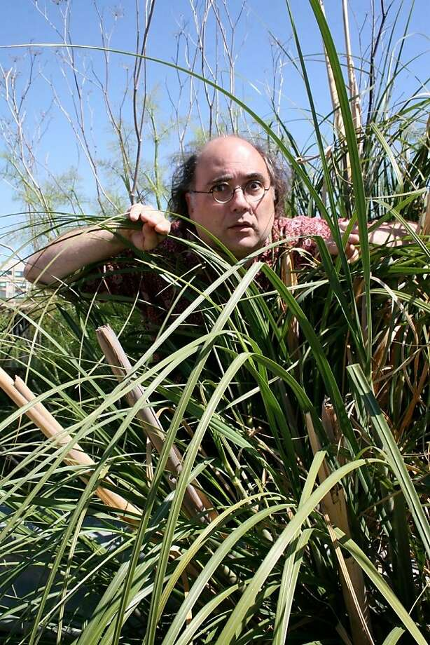 "Josh Kornbluth's ""Sea of Reeds"" involves Israel, the Torah and oboe performance. Photo: Cathleen Maclearie"