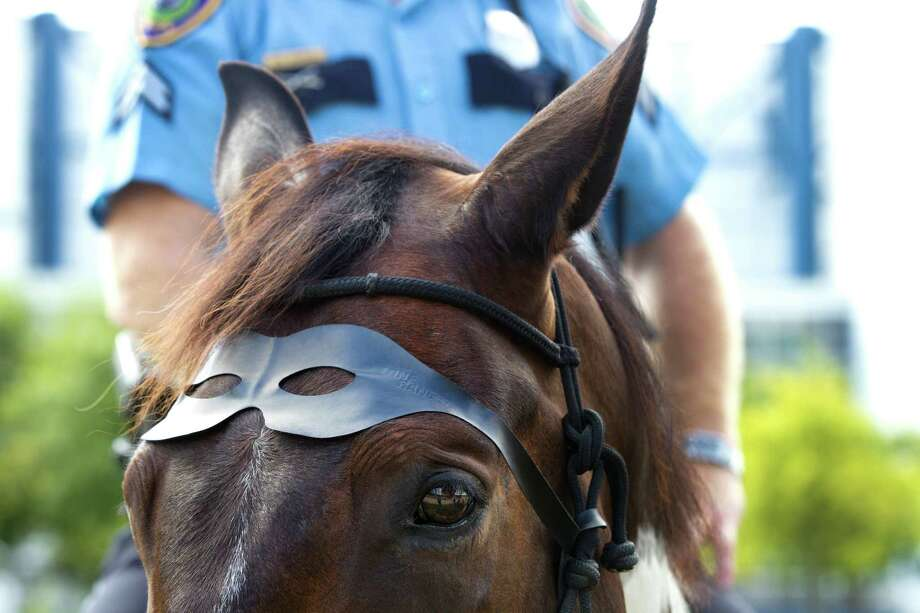 Sergeant Swatt 99, Houston Police officer Randy Myrick's horse, wears a Lone Ranger mask during a ceremony inducting The Lone Ranger's horse, Silver, as an honorary member of the HPD Mounted Patrol at Discovery Green Wednesday, June 26, 2013, in Houston. Photo: Brett Coomer, Houston Chronicle / © 2013 Houston Chronicle
