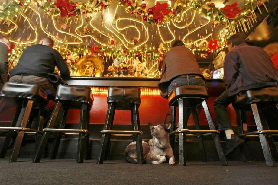 ... glamorous gay bar Marlena's.