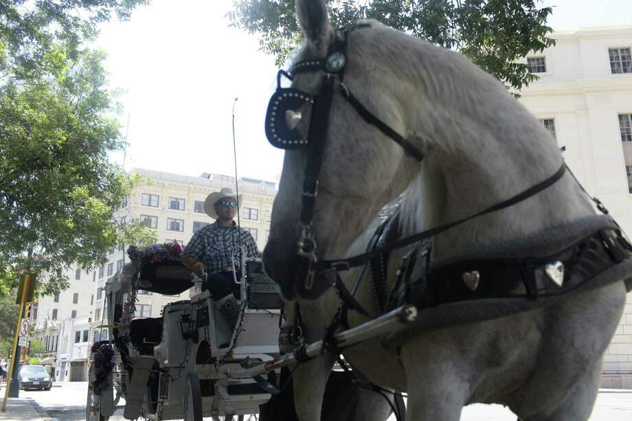 Jonathan Smith, 23 of San Antonio, sits in his carriage with his horse, Susie, in downtown San Antonio on Monday, June 17, 2013. The City Council will vote Thursday whether or not to change horse-drawn carriage regulations.