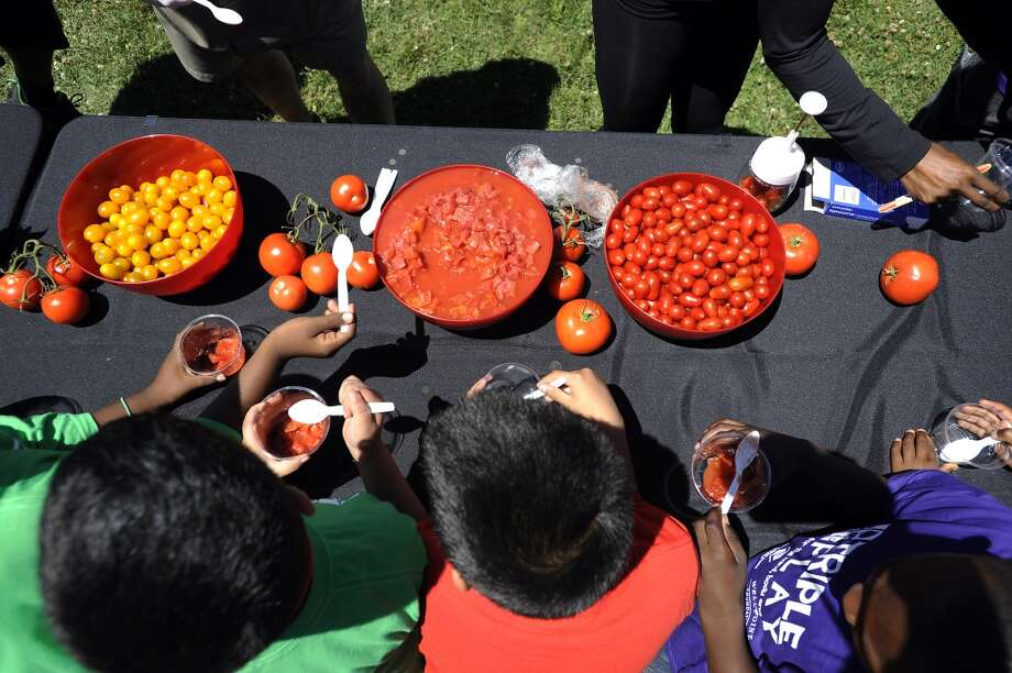 Children put together salsa at the Salsa Table.