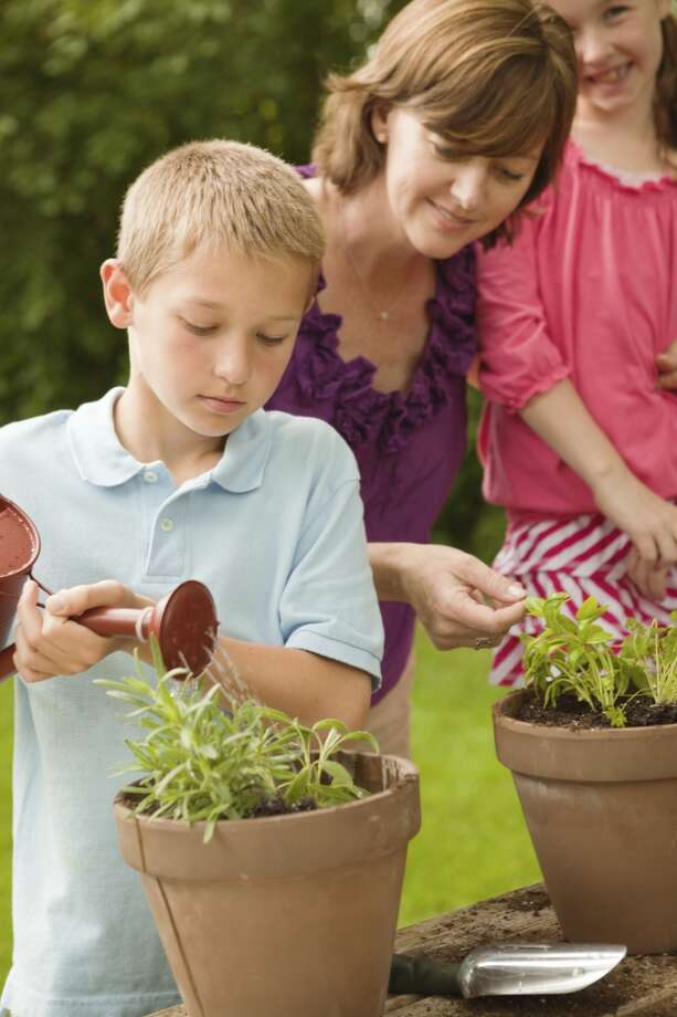 Plant an herb garden and then use the results of your efforts during a special family dinner.