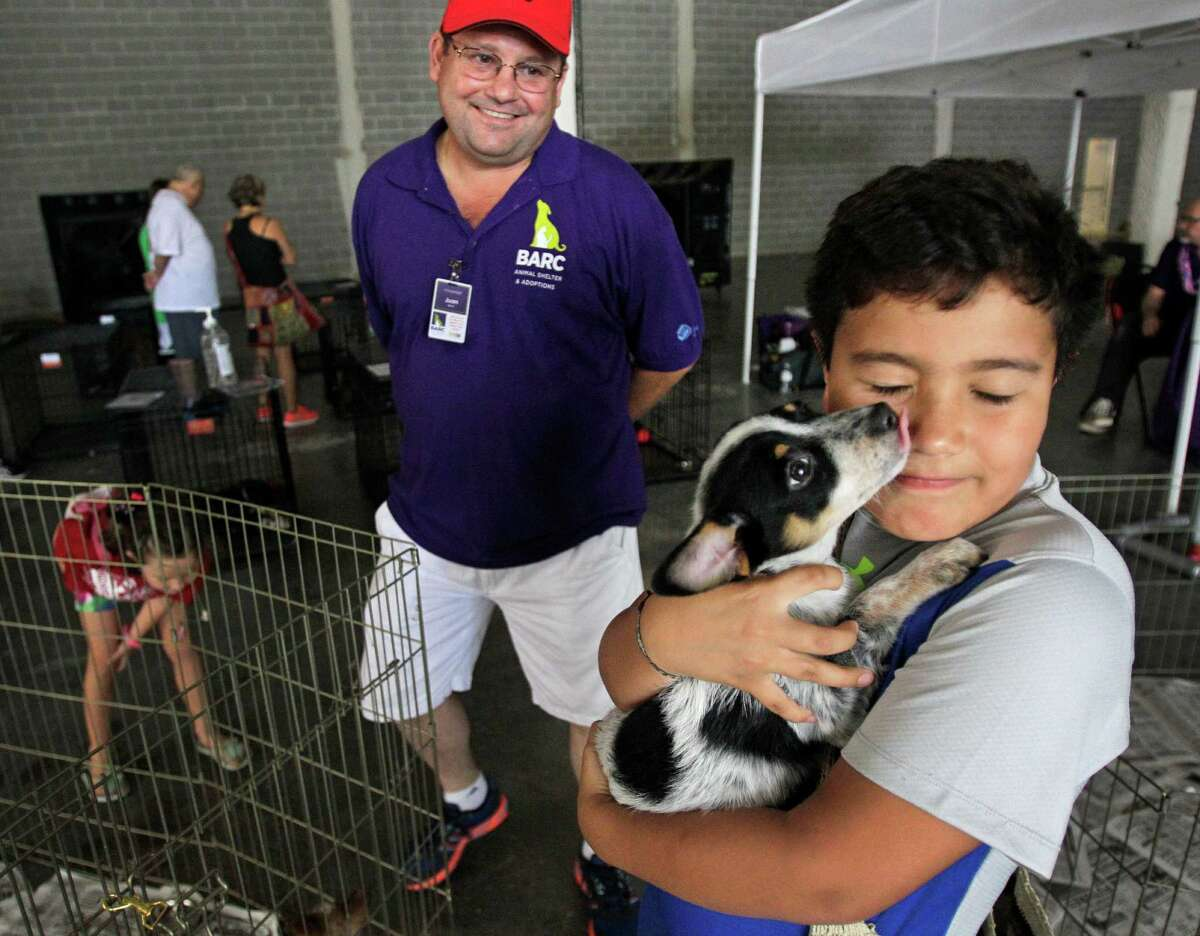 BARC volunteer Juan Miron, left, watches as Lucas Varela, 9, holds a puppy during BARC's second Annual Bow Wow Meow Luau adoption event at CityCentre, 822 Town & Country Blvd., Saturday, June 29, 2013, in Houston. More than 80 puppies, dogs, cats and kittens were available for adoption.