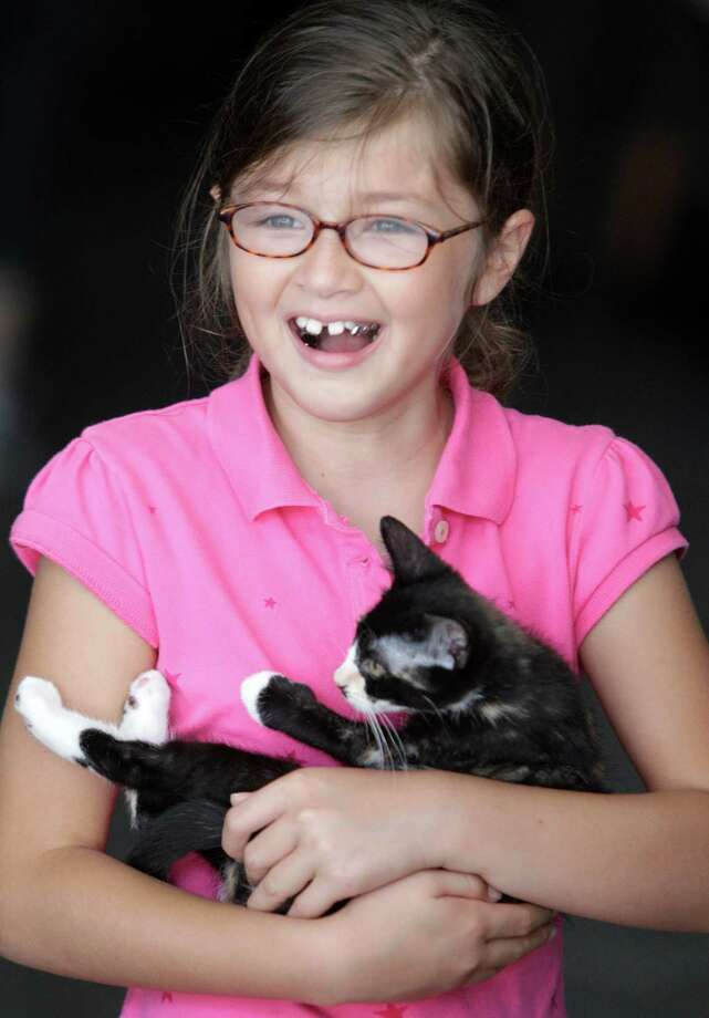 Summer Rodriuez, 9, holds a kitten during BARC's second Annual Bow Wow Meow Luau adoption event at CityCentre, 822 Town & Country Blvd., Saturday, June 29, 2013, in Houston.  More than 80 puppies, dogs, cats and kittens were available for adoption. Photo: Melissa Phillip, Houston Chronicle / © 2013  Houston Chronicle
