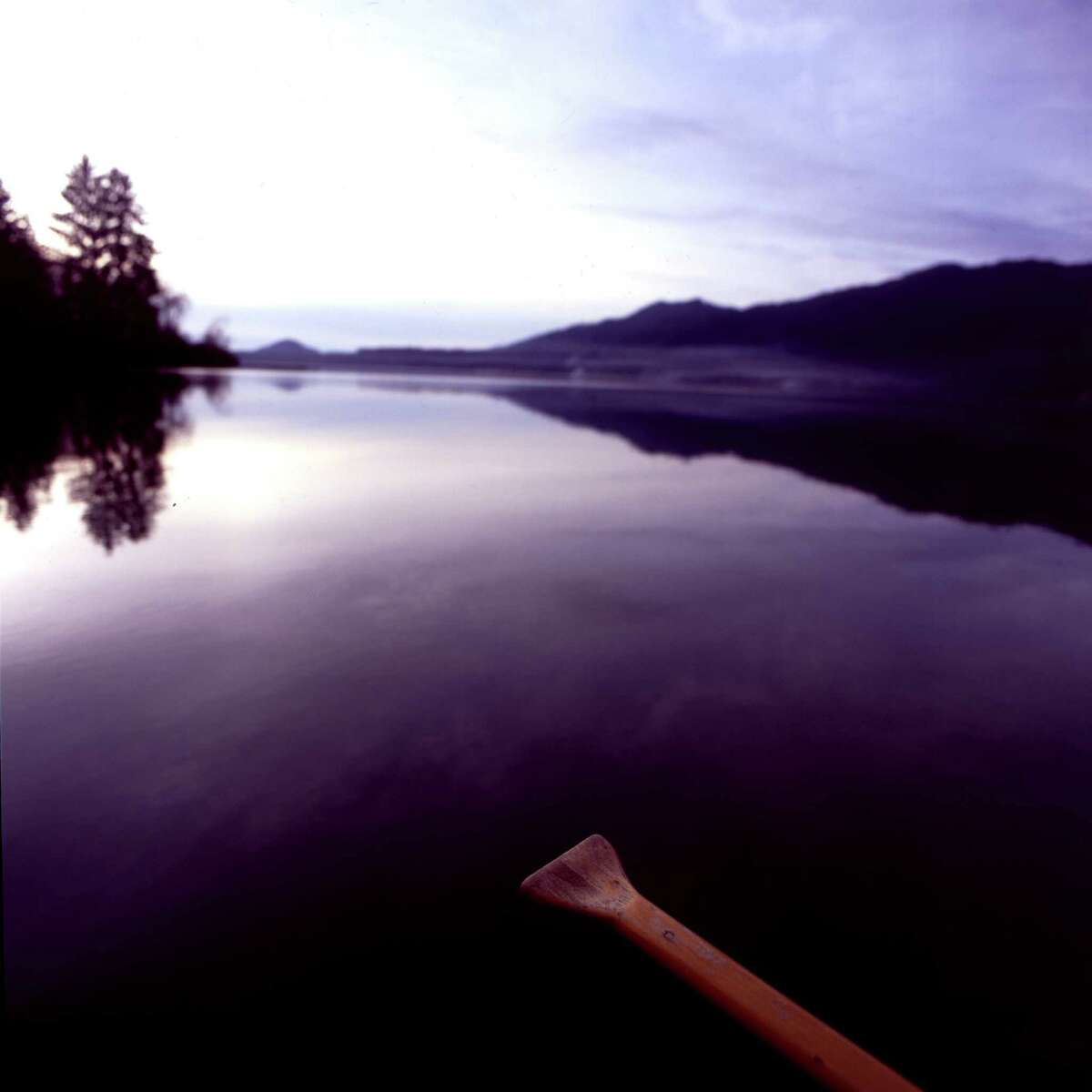 Lake Quinault:  Ridges above the Lake are part of the Wild Olympics wilderness bill.