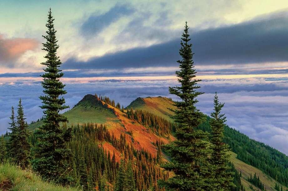 Sub-alpine ridge at sunrise, Deer Park Photo: Michael Wheatley, Getty Images/All Canada Photos / All Canada Photos