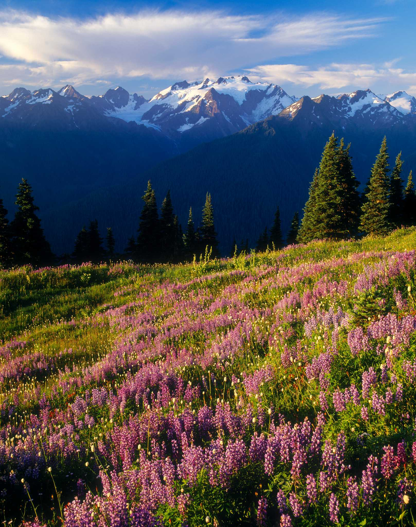 The 'Elite Eight': Connelly's ultimate hiking destinations of Washington State