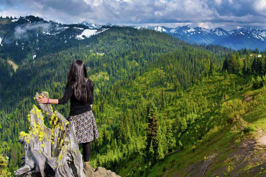 Gazing out over Olympic National Park Photo: Anna Gorin, Getty Images/Flickr RF / Flickr RF