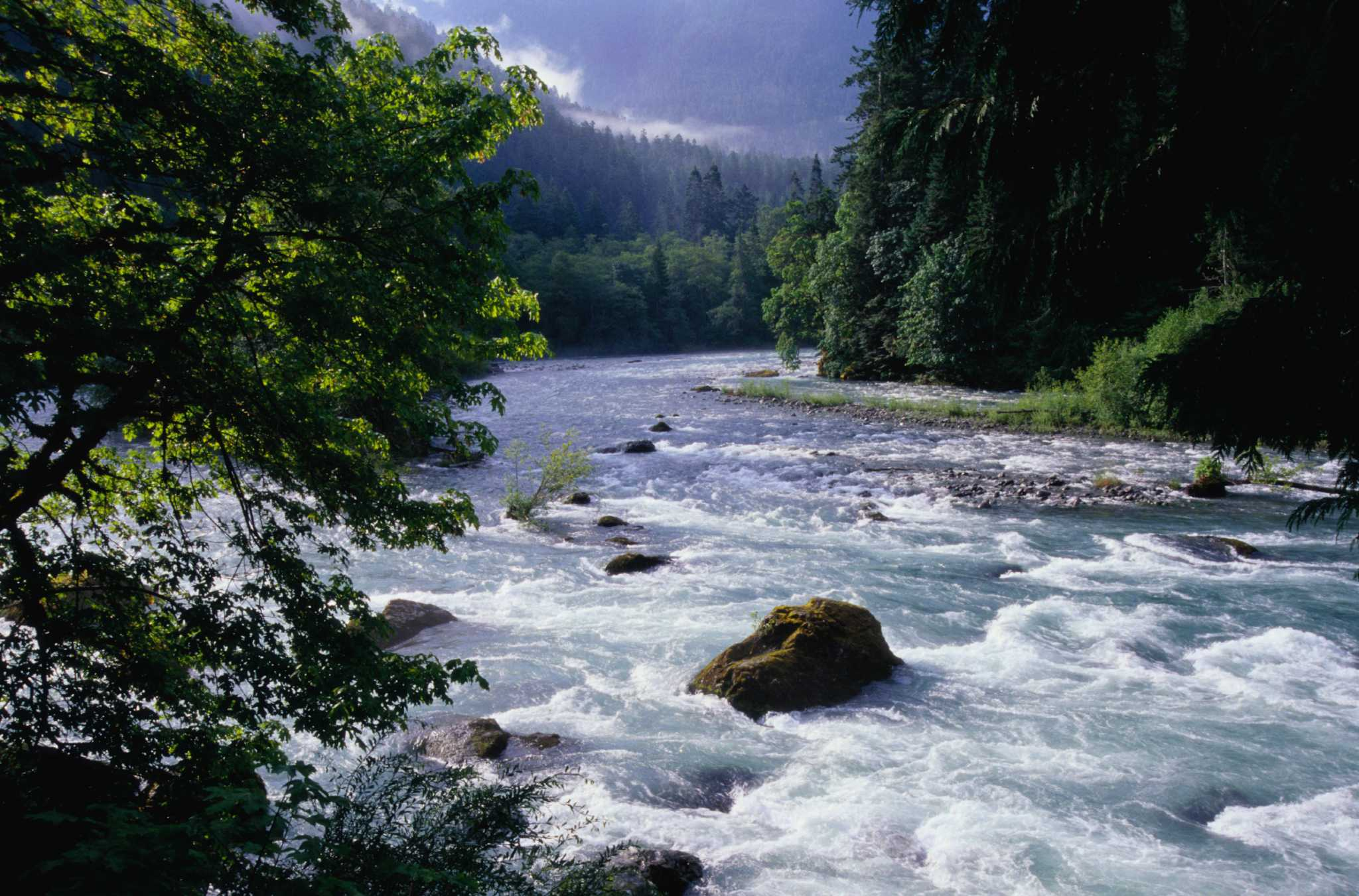 Connelly: The Elwha River restored, the Anderson Glacier gone