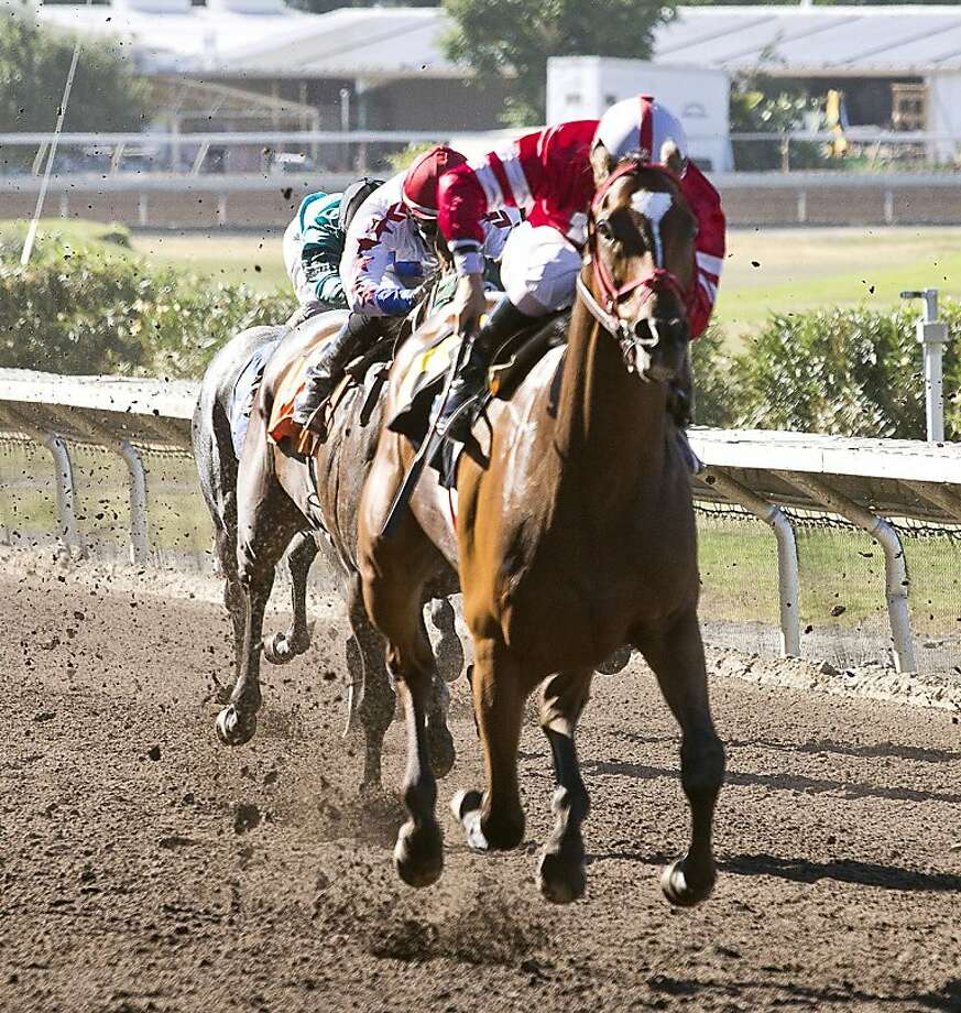 Kyle Frey rides Positive Response to victory. Photo: William G Vassar, Alameda County Fair Racing