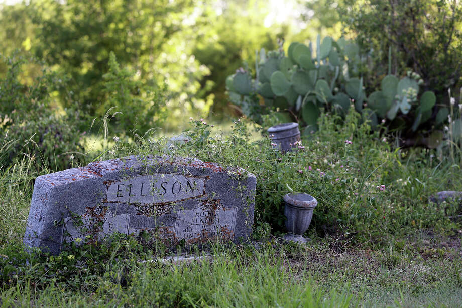 Vegetation overtakes a headstone at Southern Memorial (Eastview) Cemetery on Roland Road. The state of the cemetery led the Texas attorney general's office to sue the owner for operating without a license. Photo: TOM REEL, San Antonio Express-News