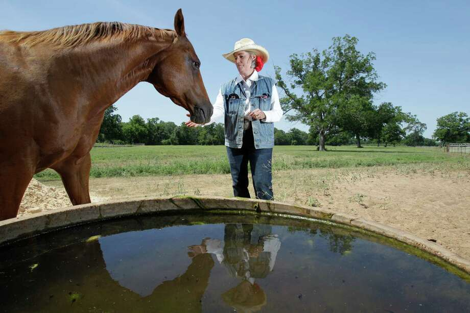 Mary Chandler, with horse Krisy, raises cattle and harvests pecans at Half Circle O Ranch in Sealy, which has been in her family since 1885. She opposes a private firm's plans to pump water from the rural aquifer beneath it to send to Fort Bend County suburbs. Photo: Melissa Phillip, Staff / © 2013  Houston Chronicle