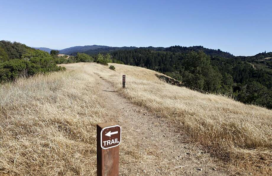 Hikers might see black-tailed deer, or less frequently a bobcat or coyote, on the ridgelines. Photo: Katie Meek, The Chronicle