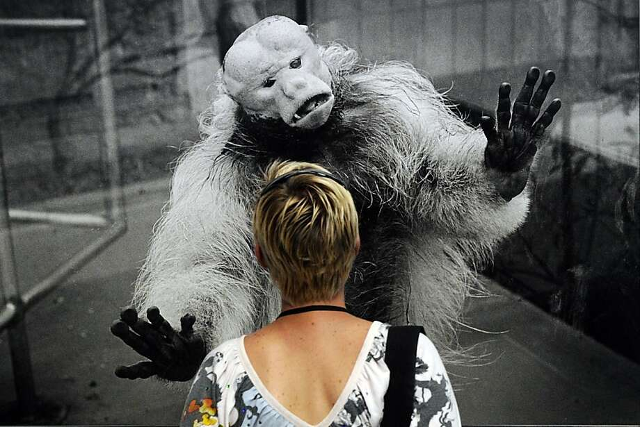 Menacing monkey: A photo by Belgian Michel Vanden Eeckhoudt captivates a visitor at the 44th Rencontres d'Arles photography festival in Arles, France. Photo: Boris Horvat, AFP/Getty Images