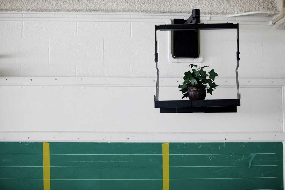 A fake ivy plant sits inside a frame normally used to hold a television at  North Forest ISD's Fonwood Elementary School, July 2, 2013 in Houston. Photo: Eric Kayne, For The Chronicle / ©2013 Eric Kayne