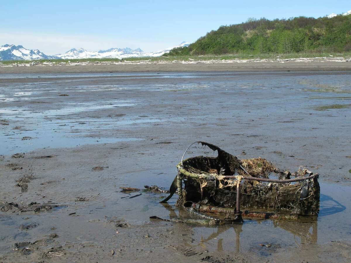 Derelict crab pot exposed at low tide.