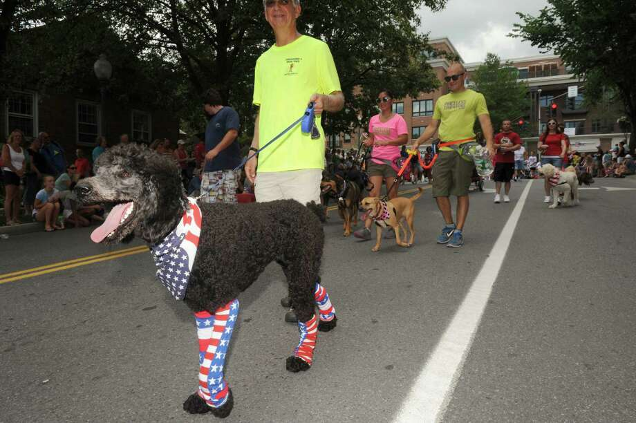 Mark Sager walks with his dog Sadie in the Saratoga Springs 4th of July Parade on Thursday July 4, 2013 in Saratoga Springs, N.Y. (Michael P. Farrell/Times Union) Photo: Michael P. Farrell / 00023042A